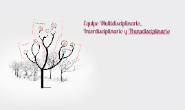 Copy of Equipo Multidisciplinario, Interdisciplinario e Intradiscipl