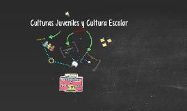 Culturas Juveniles y Cultura Escolar