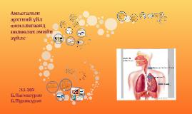 Амьсгалын эрхтний үйл ажиллагаанд нөлөөлөх эмийн зүйлс