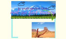 Copy of Navajo Tribe