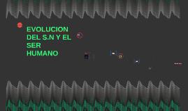 EVOLUCION DEL S.N Y EL HOMBRE