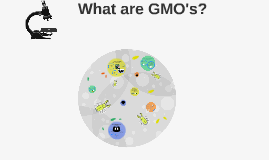 How are GMO's  made?
