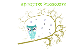 ADJECTIF POSSESIFS
