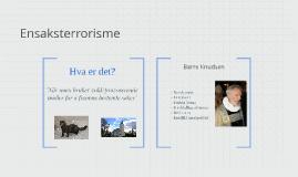 Ensaksterrorisme
