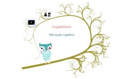 Clase 4 Cognitiva Evolutiva Infancia Preadolescencia