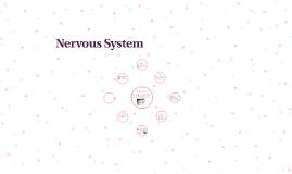 Nervous Sytem