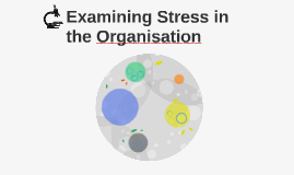 Examining Stress in the Organisation