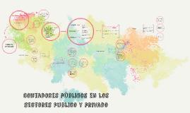 Copy of Contadores publicos en los sectores publico y privado