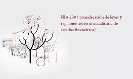 Copy of NORMA INTERNACIONAL DE AUDITORÍA 250 (NIA 250)