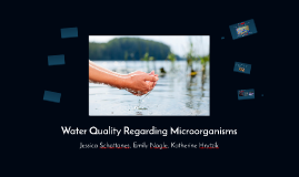 Water Quality Regarding Microorganisms