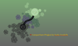 Comparison Project by Katia Zeydelis