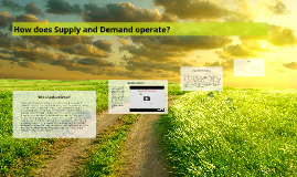 How does Supply and Demand operate?