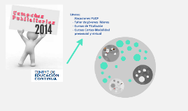 Copy of Campañas 2014