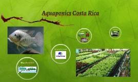 Aquaponics Costa Rica