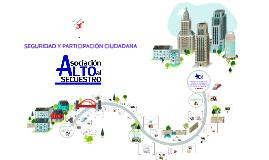 Copy of Seguridad ciudadana