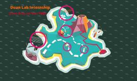EEE Internship