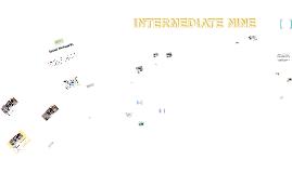INTERMEDIATE 9 New Book