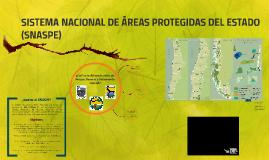 SISTEMA NACIONAL DE ÁREAS PROTEGIDAS (SNASPE)