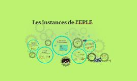 Les instances de l'EPLE