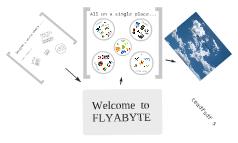 Presenting FLYABYTE
