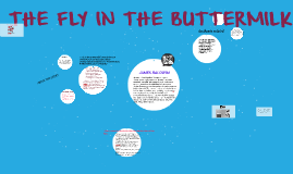 THE FLY IN THE BUTTERMILK
