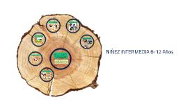Copy of NIÑEZ INTERMEDIA