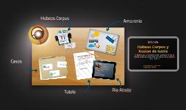 Estructura y organizacion
