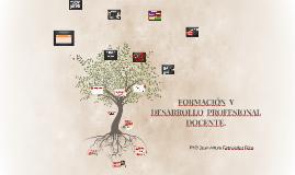 Copy of FORMACIÓN Y DESARROLLO PROFESIONAL DOCENTE