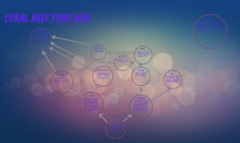 Coral Reef Food Web