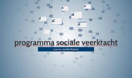 programma sociale veerkracht