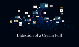 Digestion of a Cream Puff