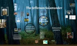 The Jefferson Salamander