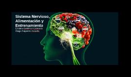 Sistema nervioso, alimentación y entrenamiento