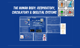 The Human body: Respiratory, circulatory & Skeletal systems