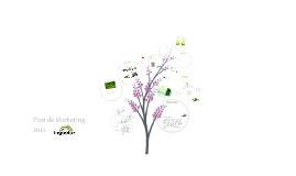 Copy of INGOOTEX - Plan de Marketing