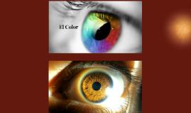 Percepcion & Sensacion