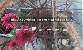 Bild Åk 9 Avbilda  din sko med kol och krita