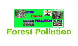 Forest Pollution