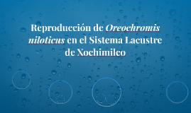 Reproducción de Oreochromis niloticus en el Sistema Lacustre