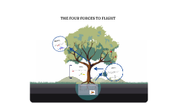 THE FOUR FORCES TO FLIGHT