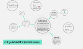 5.3 Organizational Structure for Businesses