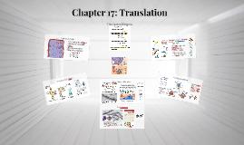 Chapter 17: Translation