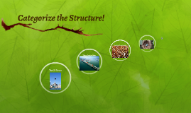 Categorize the Structure!