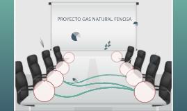 PROYECTO GAS NATURAL FENOSA