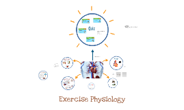 Yr 10 Pe Exercise Physiology