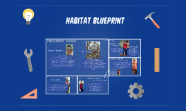 HABITAT BLUEPRINT