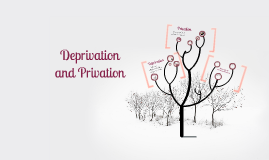 Deprivation and Privation - AS Psychology