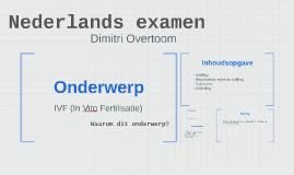 Nederlands examen