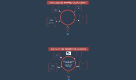 Cálculo del tamaño de muestra y estrategias de muestreo