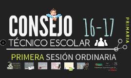 C.T.E. 16-17: Primera Sesión Ordinaria